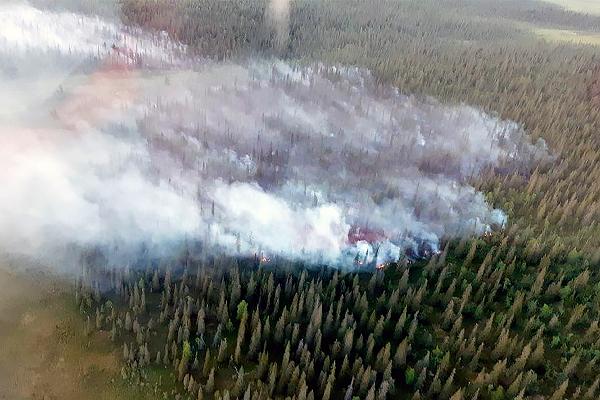 ilmakuva metsäpaloalueesta.